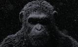 Válka o Planetu opic | Fandíme filmu