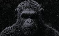 Válka o Planetu opic: První teaser | Fandíme filmu