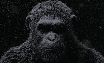 Válka o Planetu opic: Konečně teaser na trailer, co stojí za to | Fandíme filmu
