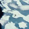 Before the Flood: Leonardo DiCaprio varuje před oteplováním | Fandíme filmu