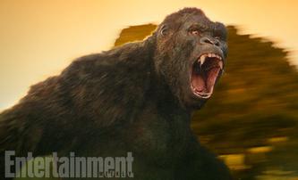 Kong: Ostrov lebek: První pohled na King Konga   Fandíme filmu