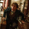 Warner plánuje: Velké filmy, velké seriály, víc DC, vše k vám domů | Fandíme filmu