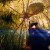 Kong: Ostrov lebek | Fandíme filmu