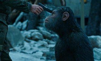 Válka o Planetu opic: Ochutnávka ze zítřejšího traileru | Fandíme filmu