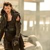 Box Office: Psi a zombíci   Fandíme filmu