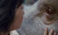 OKJA: Nová sci-fi od autora Snowpiercera stvoří nového živočicha | Fandíme filmu