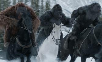 Válka o Planetu opic: První zámořské reakce | Fandíme filmu