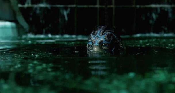 The Shape of Water: Nepřístupný trailer více odhaluje vodní stvoření | Fandíme filmu