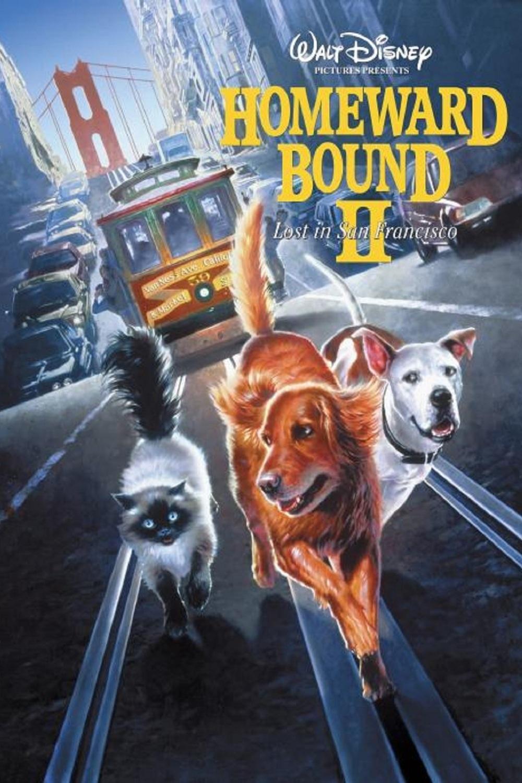 Homeward Bound II: Lost in San Francisco | Fandíme filmu