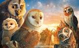 Legenda o sovích strážcích | Fandíme filmu