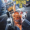 Homeward Bound II: Lost in San Francisco | Fandíme filmu