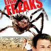 Pavoučí teror | Fandíme filmu