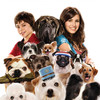 Hotel pro psy | Fandíme filmu
