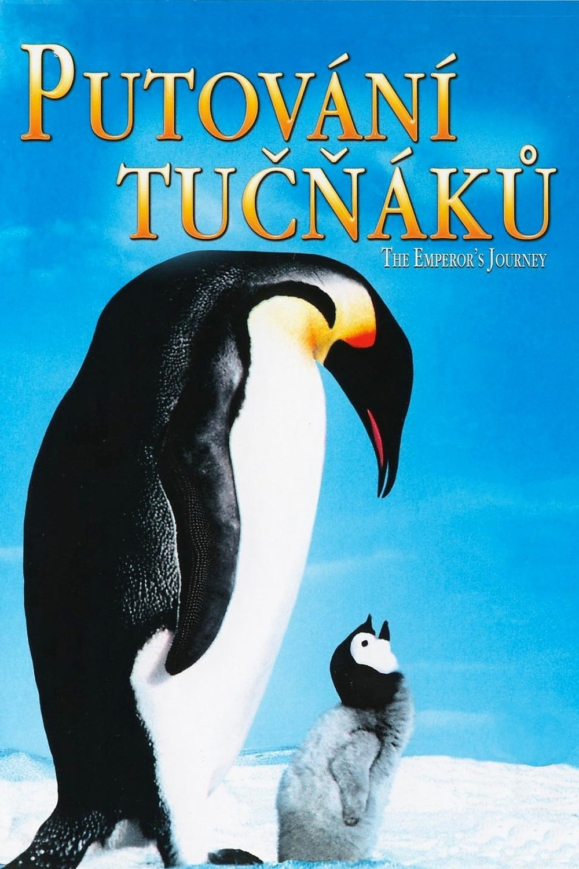 Putování tučňáků   Fandíme filmu