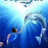 Můj přítel delfín | Fandíme filmu