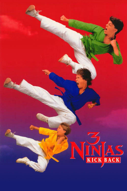 3 Ninjas Kick Back | Fandíme filmu