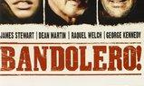 Bandolero! | Fandíme filmu