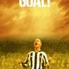 Creed 2: Nejoblíbenější sportovní filmy Floriana Munteanua | Fandíme filmu