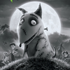 Frankenweenie: Domácí mazlíček | Fandíme filmu