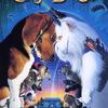 Jako kočky a psi | Fandíme filmu