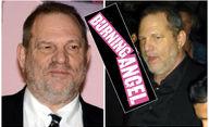 I porno průmysl má své hranice: Brojí proti predátorovi Weinsteinovi   Fandíme filmu