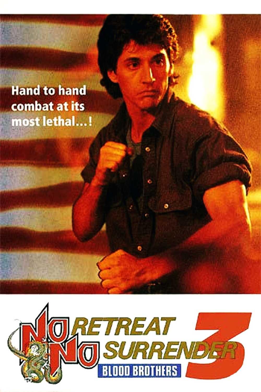 Karate tiger 3: Pokrevní bratři | Fandíme filmu