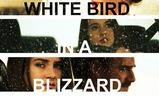 White Bird in a Blizzard   Fandíme filmu