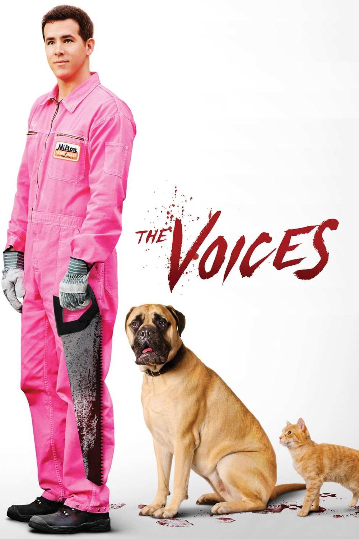 Hlasy | Fandíme filmu