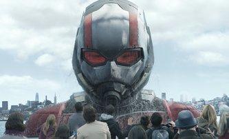 Ant-Man & The Wasp budou úzce provázaní s Infinity War | Fandíme filmu