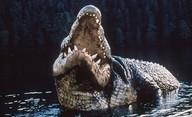 Crawl: Režisér Piraně se pustí do boje s aligátory | Fandíme filmu