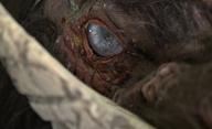 Boar: Čas krmení aneb pozor na krvežíznivé megadivočáky! | Fandíme filmu