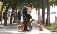 Dog Days: Vanessa Hudgens a Nina Dobrev v romantické týmovce | Fandíme filmu