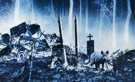 Řbitov zviřátek: Natáčení začalo, je tu oficiální synopse | Fandíme filmu