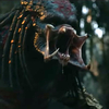 Predátor: Evoluce: Plnohodnotný trailer nejistotu úplně nerozptýlí | Fandíme filmu