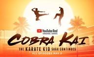 Cobra Kai: Martin Kove se vyjádřil k 2. sérii | Fandíme filmu