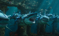 Aquaman: Žraloci a hrdinové na nových fotkách | Fandíme filmu