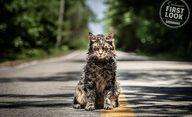 Řbitov zviřátek: První fotky z nového hororu podle Kinga | Fandíme filmu