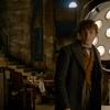 Fantastická zvířata 3: Do světa kouzel se vrací scenárista Harryho Pottera, natáčení schváleno | Fandíme filmu
