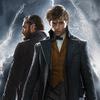 Fantastická zvířata: J.K. Rowling čelí kritice kvůli vztahu Brumbála a Grindelwalda | Fandíme filmu