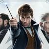 Recenze: Fantastická zvířata: Grindelwaldovy zločiny | Fandíme filmu