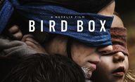 Bird Box: Postapokalyptický thriller se Sandrou Bullock je rekordní | Fandíme filmu
