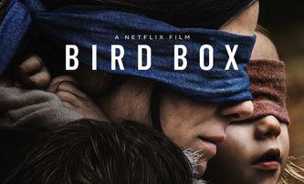 Bird Box: Postapokalyptický thriller se Sandrou Bullock je rekordní   Fandíme filmu