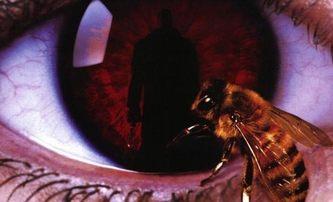 Candyman: Remake se nekoná, půjde o volné pokračování | Fandíme filmu