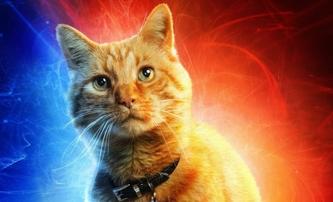 Captain Marvel a 10 character posterů od Carol až po kocoura | Fandíme filmu