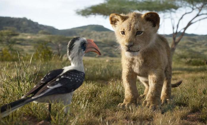 """Lví král: První ohlasy """"hranou"""" předělávku chválí i haní   Fandíme filmu"""
