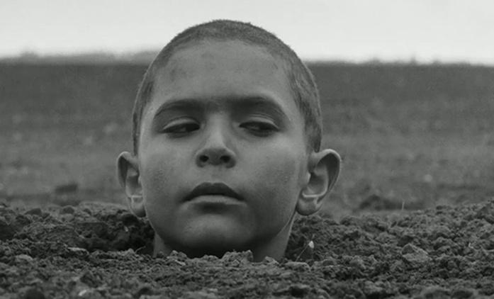 Režisér Nabarveného ptačete Václav Marhoul získal mezinárodní zastoupení. Má i další mezinárodní ambice? | Fandíme filmu