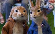 Králíček Petr bere do zaječích: Trailer na pokračování potvrzuje, že tomuhle rošťákovi byla zahrada vždycky malá | Fandíme filmu