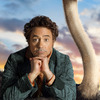 Dolittle: Dračí zácpa prý byla Downeyho nápad, aneb další podrobnosti o filmové katastrofě | Fandíme filmu