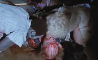 Corona Zombies: Koronavirovou pandemií inspirovaný horor se vytasil s trailerem | Fandíme filmu