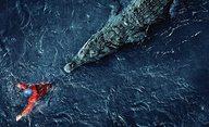 Black Water: Abyss: Připravte se na krokodýlí hody - jste hlavní chod | Fandíme filmu